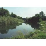 >Продам в г. Чугуев приват. участок 1,6 га в 100 м от реки