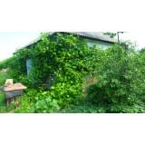 >Продам в Малиновке небольшой дом с печным отоплением