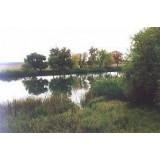 >Продам приват. участок на берегу реки (40 м) Сев. Донец в п. Печенеги