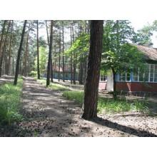 >Продам бывший пионер. лагерь в сосновом лесу