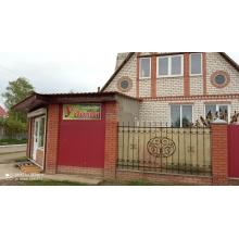 >Продам 2х этажный дом с действующим магазином в Малиновке