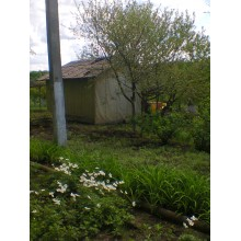 >Продам дачный домик в Чугуеве ДЭУ