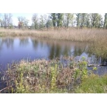 >Продам на берегу реки в Башкировке приват. участок