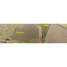 >Продам земли ОСГ – 1,5 га в  с. Базалиевка – на берегу одного из  водоемов Печенежского рыб. хозa
