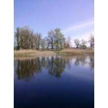 >В Чугуеве – Башкировка продам приват. участок 10 сот. на берегу озера вблизи реки