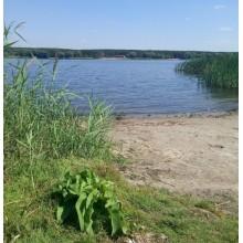 >Продам 10 соток земли на берегу реки Сев. Донец